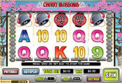 Cherry Blossoms Slots