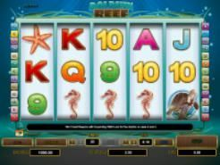Dolphin Reef Slots (Playtech)